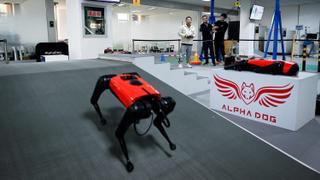 Artificial intelligence gives high-tech pets a leg up | Money