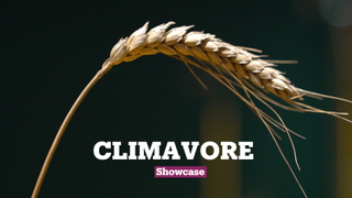 Climavore: Seasons Made to Drift
