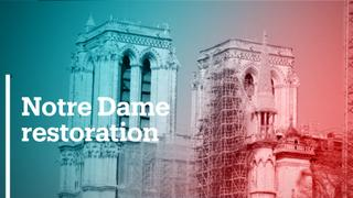 Notre Dame coming back to life