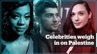 Celebrities weigh in on attacks on Palestine