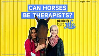 Can Horses Be Therapists?   Not News But Life   Episode 10