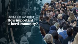 ENDING THE PANDEMIC: How important is herd immunity?