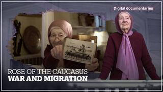 Rose of the Caucasus: War and Migration