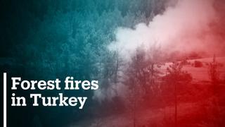 Turkey's fire survivors try to rebuild lives
