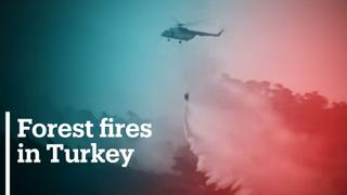 Firefighters, locals work tirelessly to contain fires in Turkey