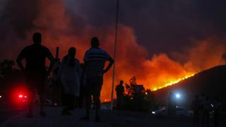 Most blazes brought under control as forest fires continue   Money Talks