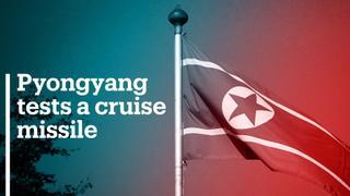 North Korea flexes military might