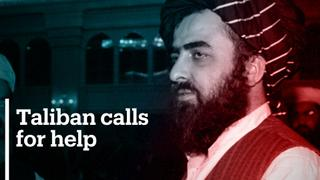 Taliban calls on the international community for help