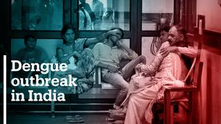 Dengue fever kills at least 100 people in Uttar Pradesh