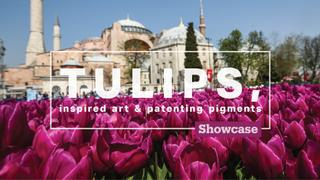 Tulips, inspired art & patenting pigments | Showcase Special