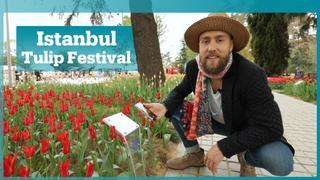 Istanbul's International Tulip Festival