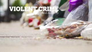 UK Violent Crime and Austerity