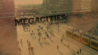 Are megacities sustainable?