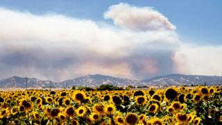 California Wildfire: Officials say blaze grew by two-thirds overnight