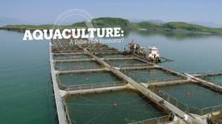 Aquaculture: A false fish economy?