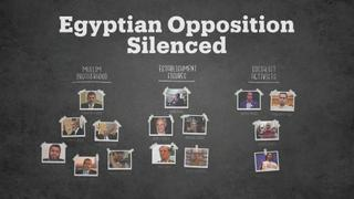 Egyptian opposition since the 2013 coup