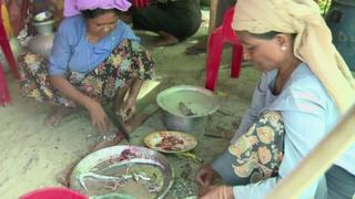 Myanmar Politics: Suu Kyi says more could have been done for Rakhine