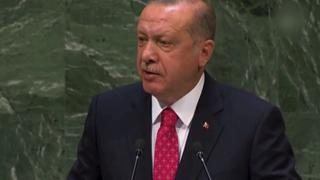 UN General Assembly: Erdogan calls for Security Council reform