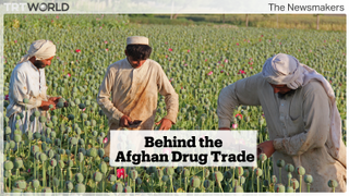 Why hasn't the United States stopped Afghanistan's flourishing heroin production?