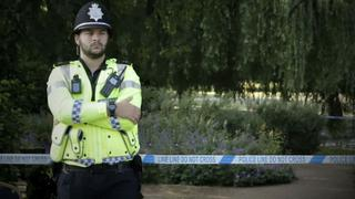 Private Police: System failure or solution?