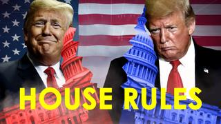 A BLUE RIPPLE! Democrats may have taken the House but can they put the brakes on the Trump train?