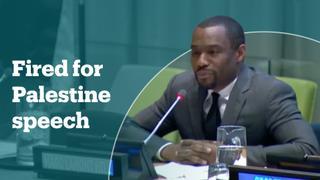 CNN commentator fired after 'free Palestine' speech at UN