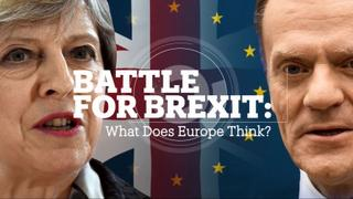Battle for Brexit: What does Europe think?