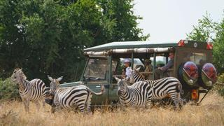 Sustainable Tourism: Tourism boosts jobs, earnings for South Africa