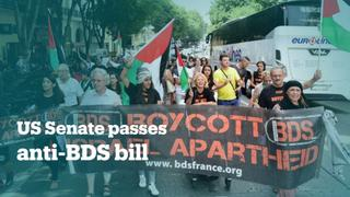 Americans criticise Senate for passing anti-BDS bill