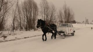 """Horse Power: Russian teacher decides to go """"old school"""""""