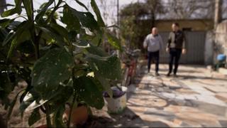 Albania's Blood Feuds: 300 families live in fear of revenge killings