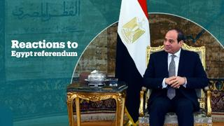 What do people think about the outcome of the Egypt referendum?
