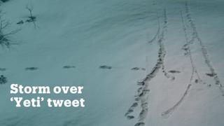 Indian Army's Yeti tweet sparks backlash