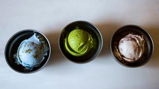 Insect Ice Cream: Maggot ice cream up for grubs in Cape Town