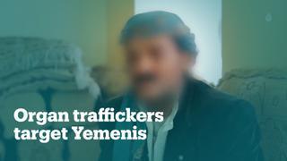 Egyptian hospital, Yemeni embassy at centre of organ trafficking ring