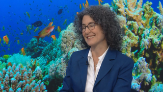 Can the ocean's corals survive climate change?