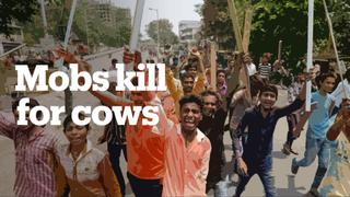 India's cow protection mobs