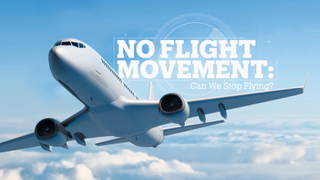 No flight movement: Can we stop flying?