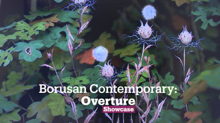Overture: Selections From The Borusan Contemporary Art Collection | Contemporary Art | Showcase