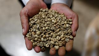 Colombian coffee farmers struggle with labour shortages   Money Talks