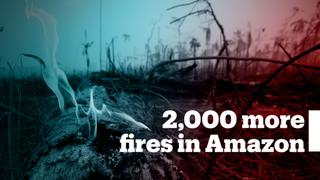 Nearly 2,000 new fires have broken out in the Amazon