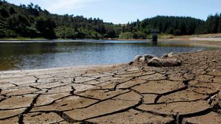 Farmers in water-deficient Jordan suffer amid severe drought   Money Talks
