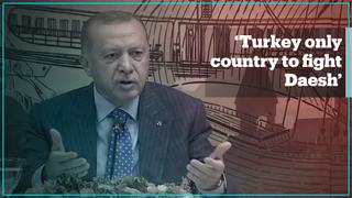 President Erdogan says Turkey only country to fight Daesh