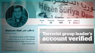 Questions raised after Twitter verifies terror group leader's account