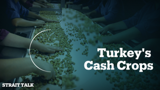 Turkey's Cash Crops
