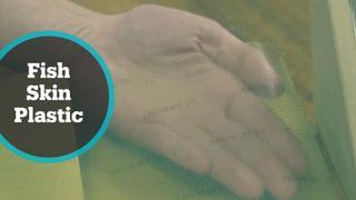 James Dyson Award Winner: UK designer invents plastic made with fish skin