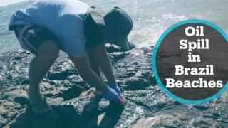 Brazil Oil Spill: Crude sludge continues to plague Brazilian beaches