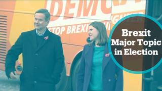 UK General Election: Liberal Democrats campaigning on remain manifesto