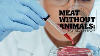MEAT WITHOUT ANIMALS: The future of food?
