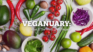 VEGANUARY: What if the world went Vegan?
